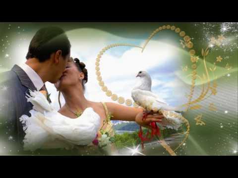 Свадебные Футажи Нежность