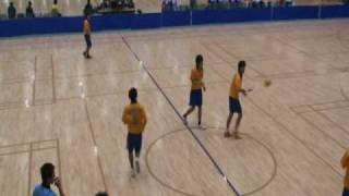 2009年11月8日(日)全日本学生ハンドボール選手権大会・男子