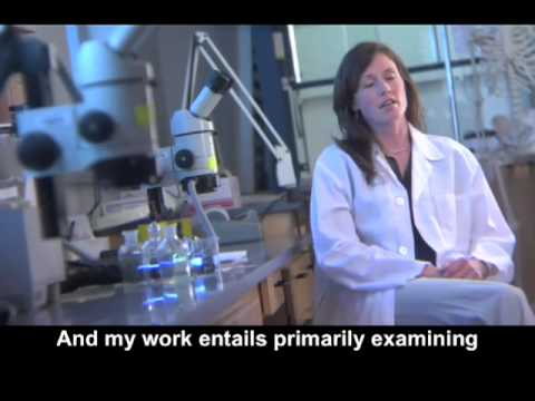 Angie Christensen: Forensic Anthropologist.mp4