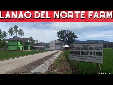 Lanao del Norte Farm Philippines | ABS-CBN News