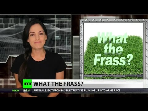 Frass: Cali's superficial plastic answer to drought
