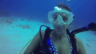 Cayman Diving 2016
