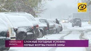 В Гомеле выпал снег и уже есть первые жертвы непогоды