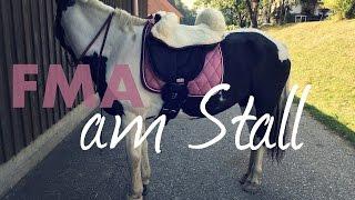 FMA am Stall 🐴 Ausritt mit neuem Ride-On-Pad | A&G HorseDiary