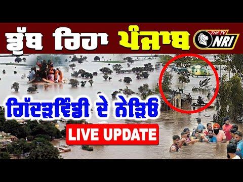 ਸਤਲੁਜ ਦਰਿਆ ਦਾ ਪਾਣੀ ਕਿਓਂ ਹੋਇਆ ਕਹਿਰਵਾਨ ? LIVE Punjab Flood News | Satluj Bakhra News