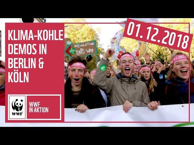 #KlimaKohleDemos am 01.12 in Berlin & Köln | Kohle stoppen! Klimaschutz jetzt! | WWF Deutschland