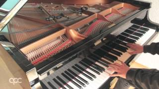 Conchita Wurst - Rise Like A Phoenix / ESC 2014 Winner Song (Benedikt Waldheuer Piano Cover ᴴᴰ)