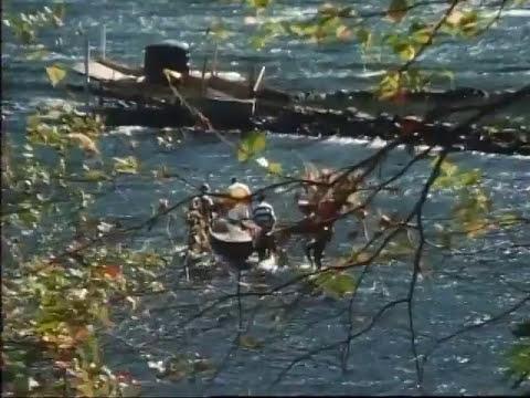 Along The Delaware - EELS