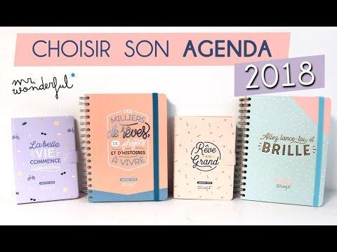 PAPETERIE REVIEW | Choisir son agenda 2018 Mr Wonderful / Bonus : Mon agenda Couture