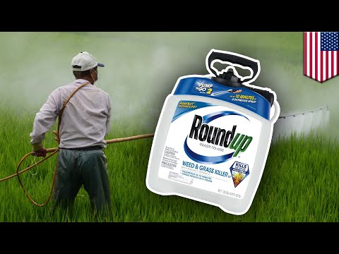 EPA Claims Carcinogen In Roundup Doesn't Cause Cancer - TomoNews