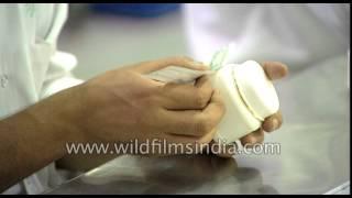 Shasilk, antiseptic Ayurvedic cream being manufactured at Shahnaz Husain