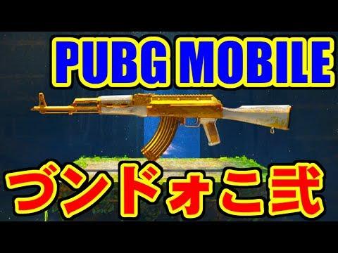 [PUBG MOBILE] づンドォこモぅクヅォ杉手(弐) [iPad Air2]