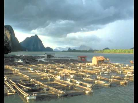 Sustainable Fisheries And Aquaculture -- Rio+20 And Beyond