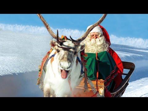 Rennes du Père Noël en Laponie - Petit Papa Noël et enfants à Rovaniemi Finlande