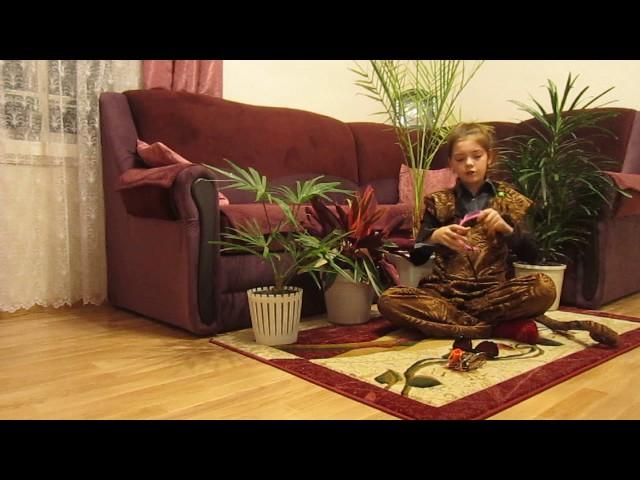 Изображение предпросмотра прочтения – КаринаБелоусова читает произведение «Мартышка и очки» И.А.Крылова