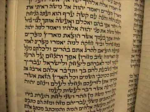 מתיקות התורה ישראל ורדיגר התורה כוללת