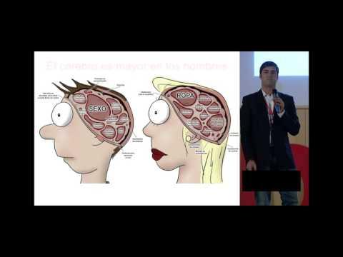 El cerebro de la mujer y el cerebro del hombre | David Díaz | TEDxCalledelaCompañia
