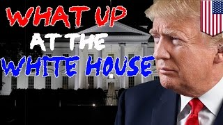 What Up at the White House recap  Trump has an up & down week, mostly down   TomoNews
