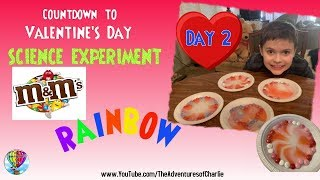 How To Make an M&M RAINBOW - DIY Valentine's Day Science Experiment!!!