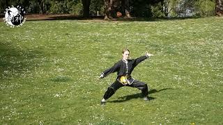 Shaolin yi lu quan