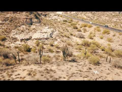 cowboy cactus,black canyon city az