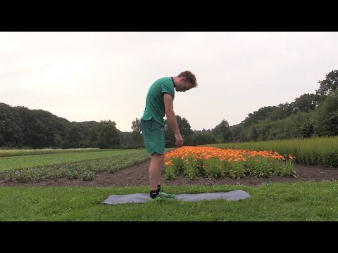 How to do a Standing Roll Down - A.Vogel Get Active