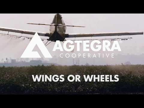 Wings or Wheels