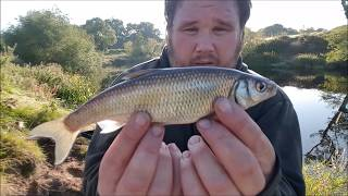 Bolo Fishing For Dace - River Dee Wales