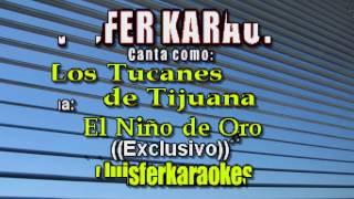 Los Tucanes de Tijuana - El Niño de Oro - Karaokes demo 2017