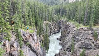 Enjoy the beauty of Nature | Jasper Alberta | ysay dale