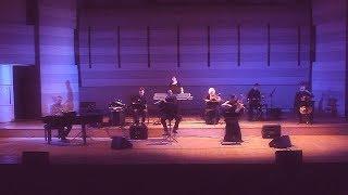 Адажио Альбинони - Концерт в Вильнюсе! Дмитрий Метлицкий /Dmitry Metlitsky