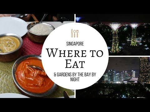 Where to eat in Singapore?  - The Curry Culture - & Singapore by Night [South East Asia Vlog #6]