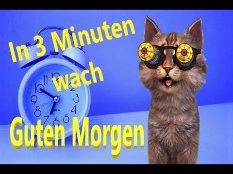 209 Mb In 3 Minuten Wachguten Morgengrüße Wochenende Freitag