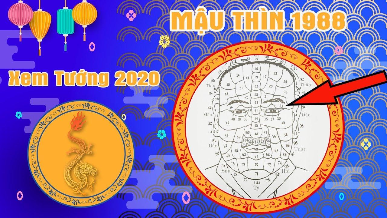 Xem Tướng Mặt 2020 – Tuổi MẬU THÌN 1988 Biết Vận Giàu Sang Hay Nghèo Khó Năm 2020