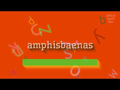 """How to say """"amphisbaenas""""! (High Quality Voices)"""