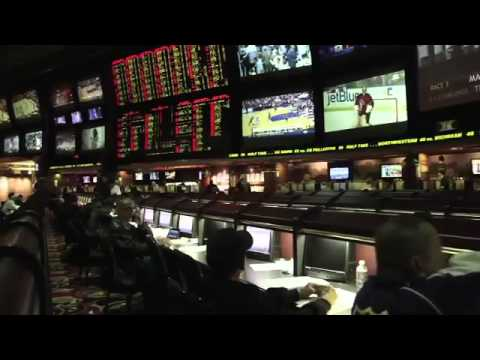 Should we legalize sports betting?