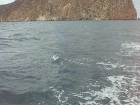 Paseo En Barco Colegio De Alhucemas (19/10/18)