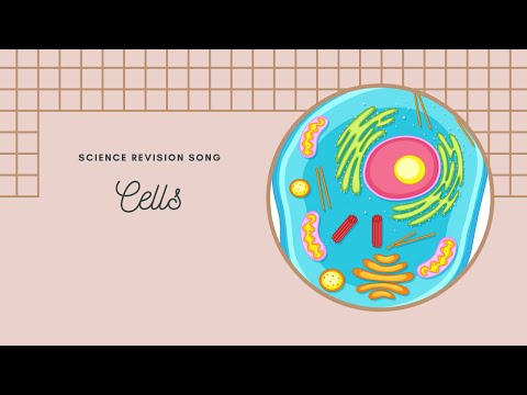 Cells - science song