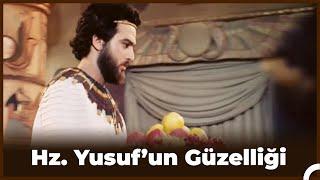 Gambar cover Hz. Yusuf'un Güzelliğini Gören Kadınlar Ellerini Kesiyor  - Hz. Yusuf  17. Bölüm