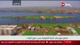 إطلالة علوية بكاميرا ON Live الخاصة على محافظة كفر الشيخ