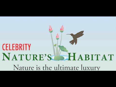 Celebrity Structures India P Ltd -  Celebrity Nature's Habitat