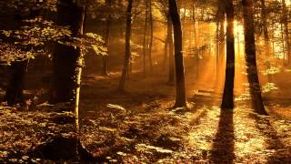 Trey Songz - 2 Reasons (Labrat Remix)