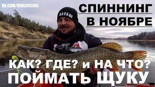 Супер Рыбалка. Ловля Щуки Осенью. Поиск Хищника на Реке. Спиннинг в Ноябре.