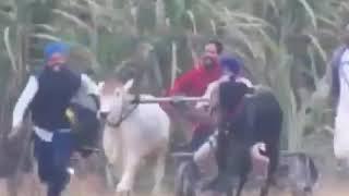 Kar diya follow Gadiya Ne Sariya Ni Tu Piche La Liya