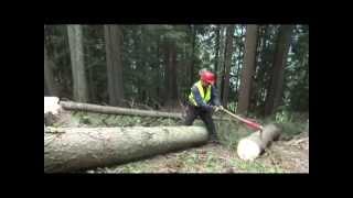 Koller Forsttechnik. Equipos forestales