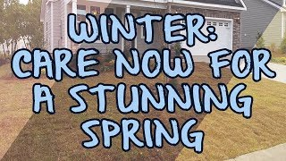 Winter: Care Now for a Stunning Spring
