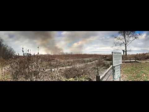Turkeyfoot Prairie Prescribed Burn 2017