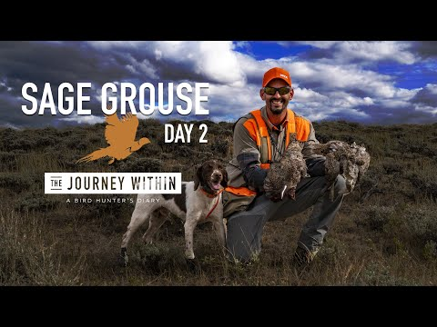 Sage Grouse, Wyoming Day 2: The Journey Within - A Bird Hunter's Diary | Mark V Peterson