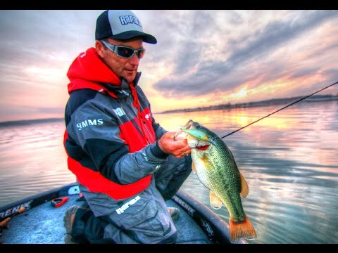 Fishing for Bass with the New Rapala Shadow Rap Shad