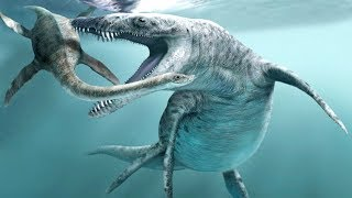 "TOP 10 ""SEA DINOSAURS"""